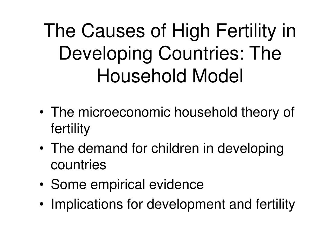 The Causes of High Fertility in Developing Countries: The Household Model