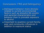 conclusions fas and delinquency