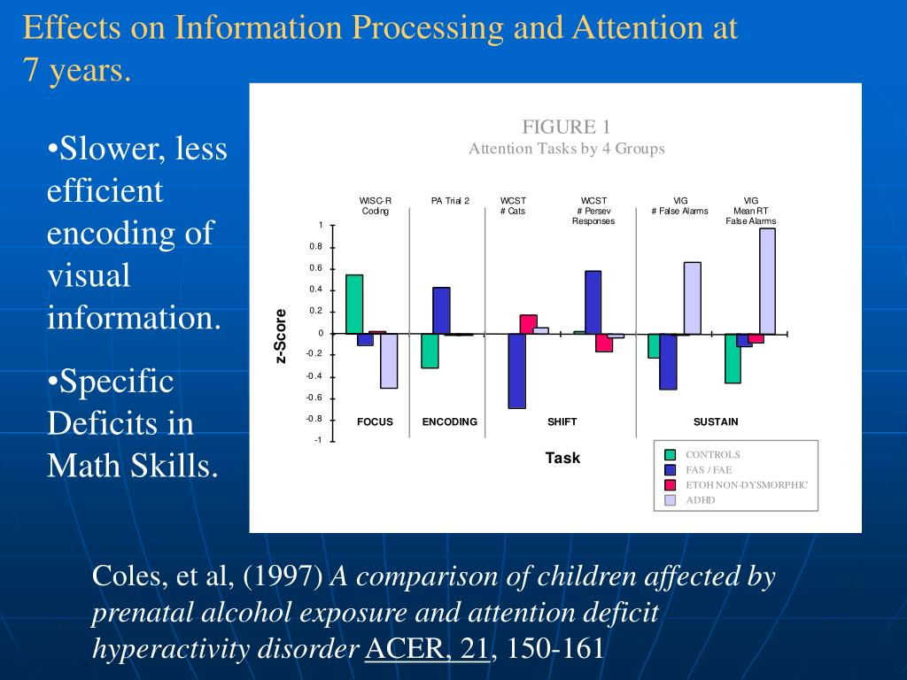 Effects on Information Processing and Attention at 7 years.