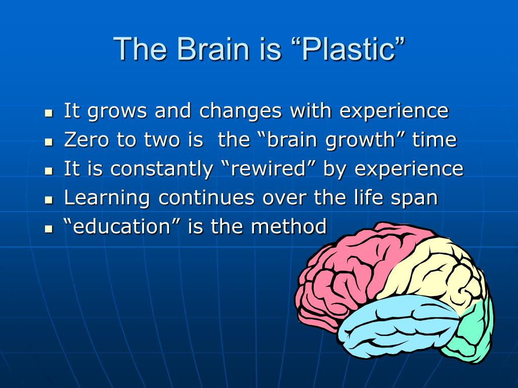 "The Brain is ""Plastic"""