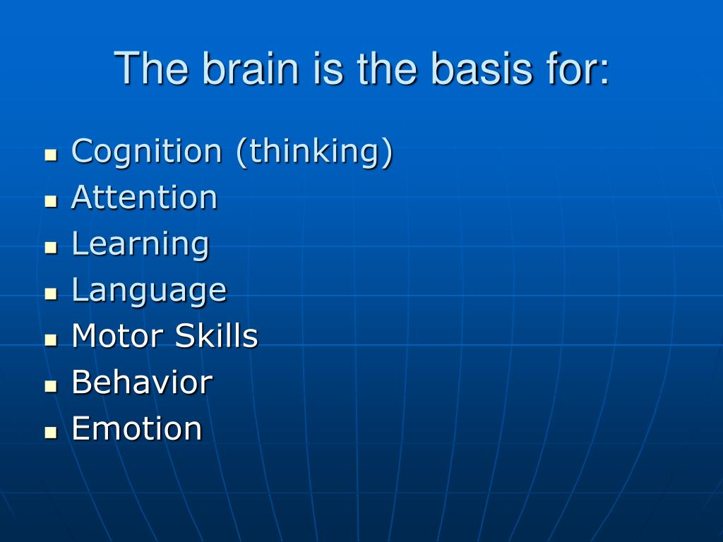 The brain is the basis for: