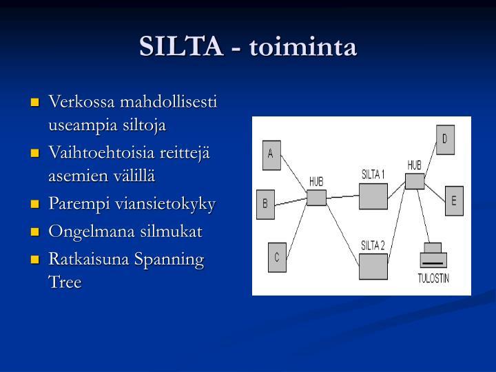 SILTA - toiminta