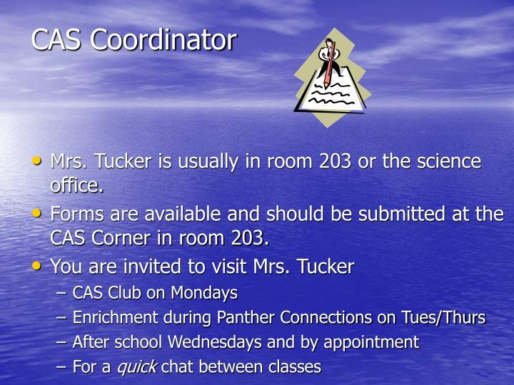 CAS Coordinator