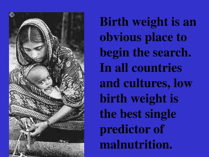 Birth weight is an obvious place to begin the search. In all countries and cultures, low birth weight is the best single predictor of malnutrition.