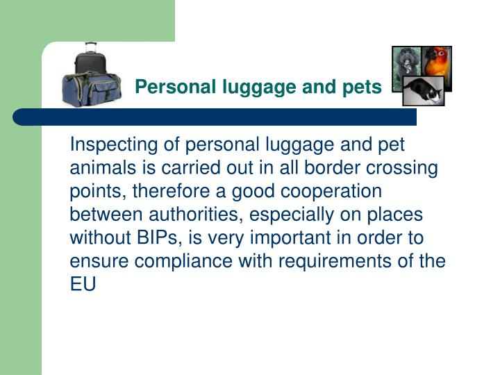 Personal luggage and pets