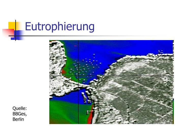 Eutrophierung