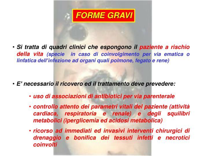 FORME GRAVI