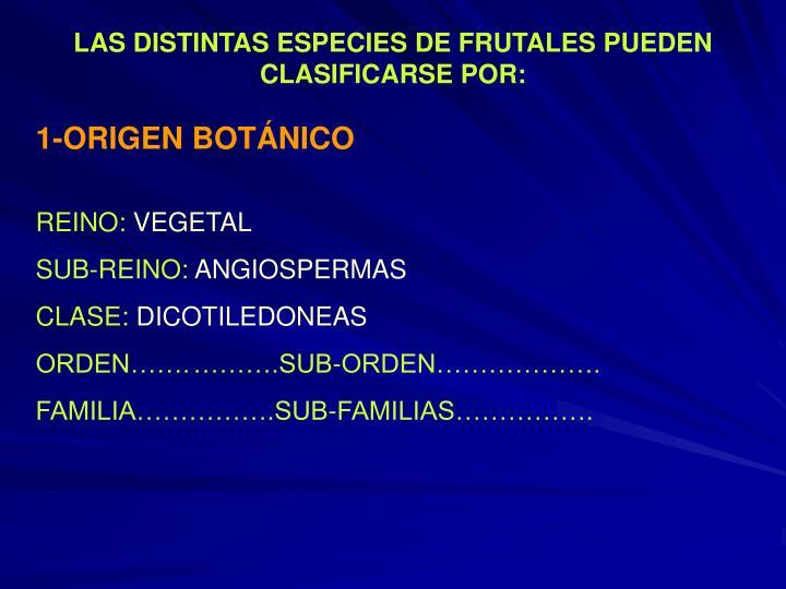 LAS DISTINTAS ESPECIES DE FRUTALES PUEDEN CLASIFICARSE POR: