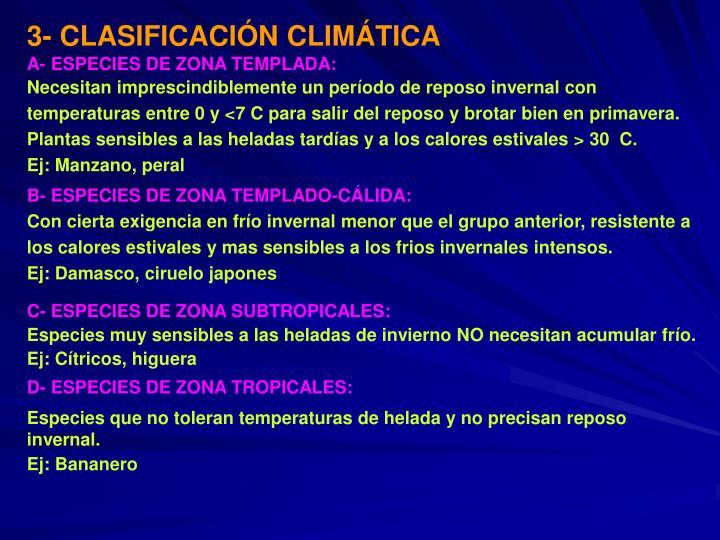3- CLASIFICACI