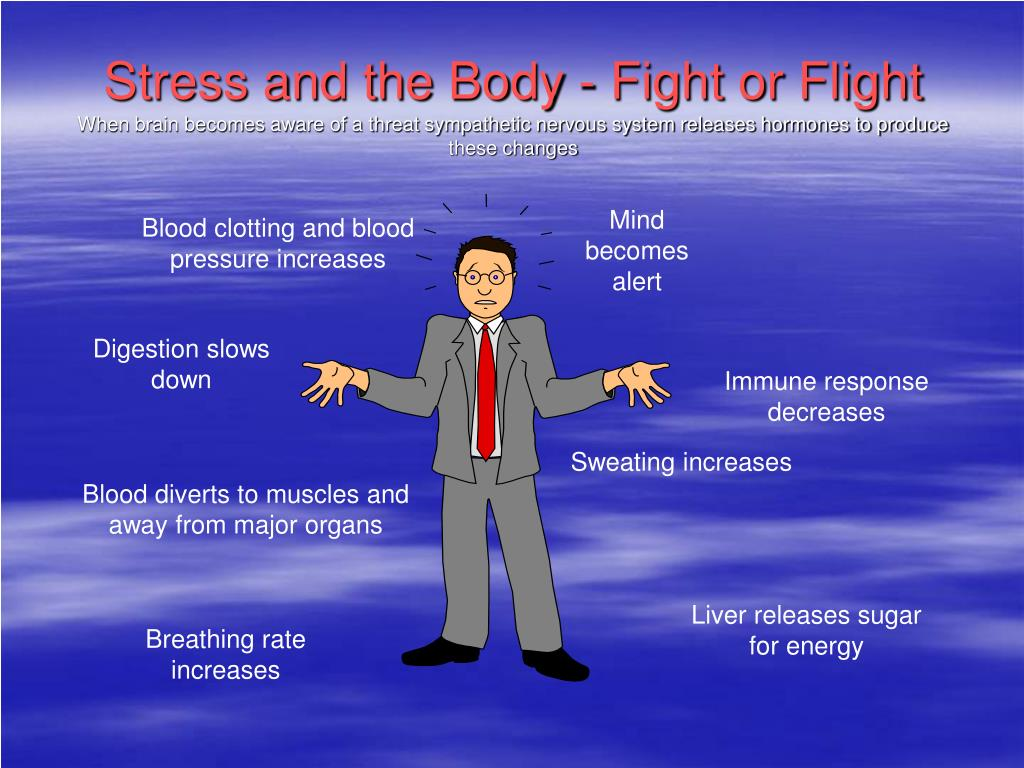 Stress and the Body - Fight or Flight