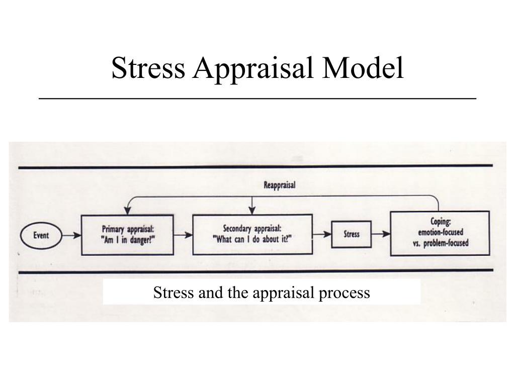 Stress Appraisal Model
