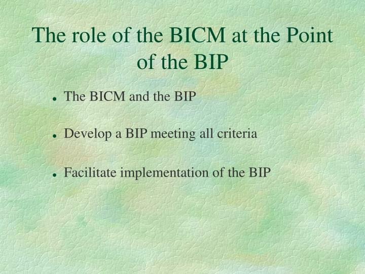 The role of the bicm at the point of the bip