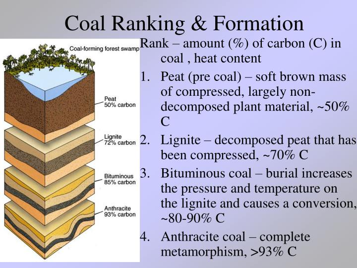 Coal Ranking & Formation