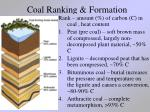 coal ranking formation