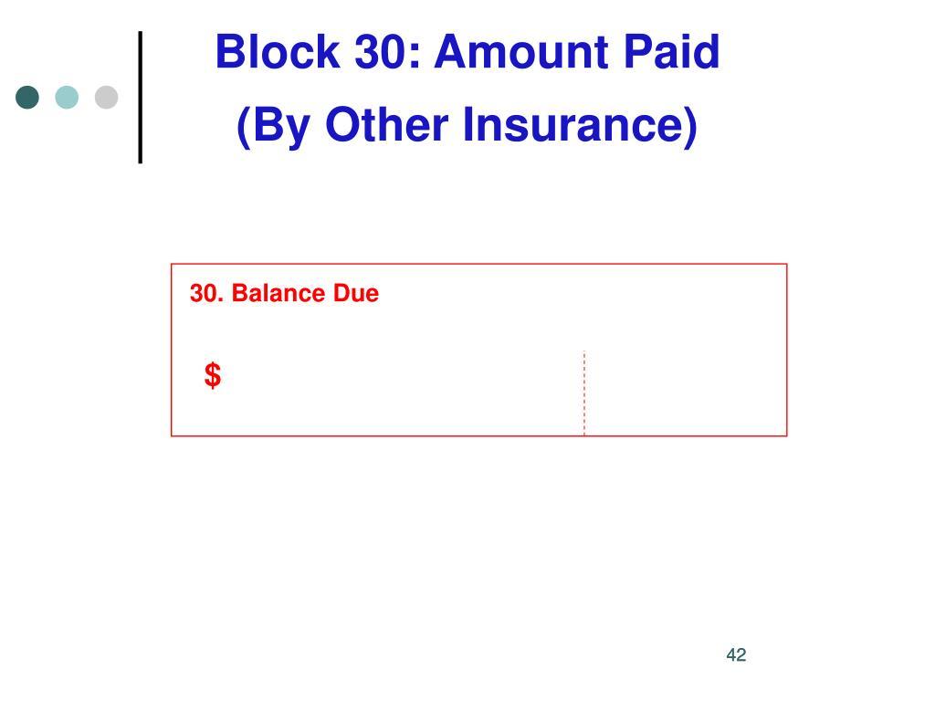 Block 30: Amount Paid
