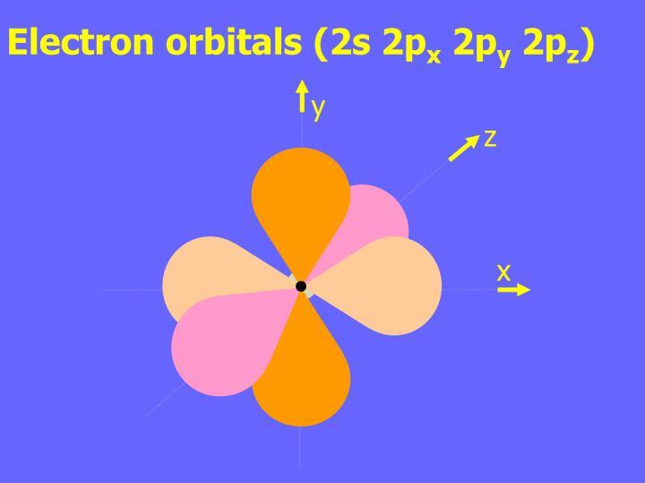 Electron orbitals (2s 2p