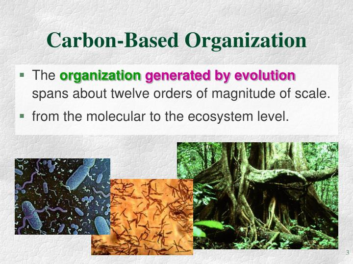 Carbon based organization