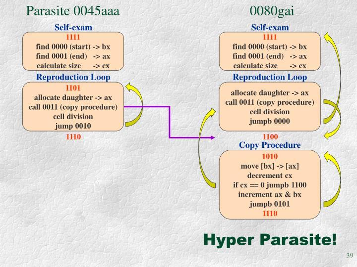 Parasite 0045aaa