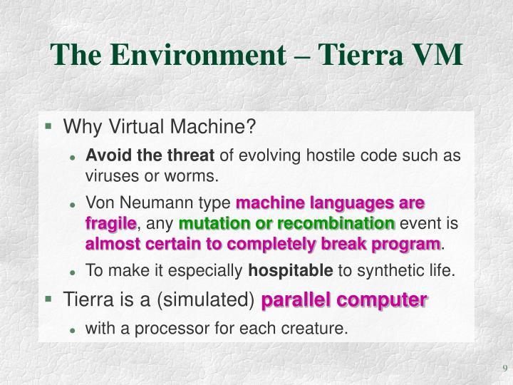 The Environment – Tierra VM