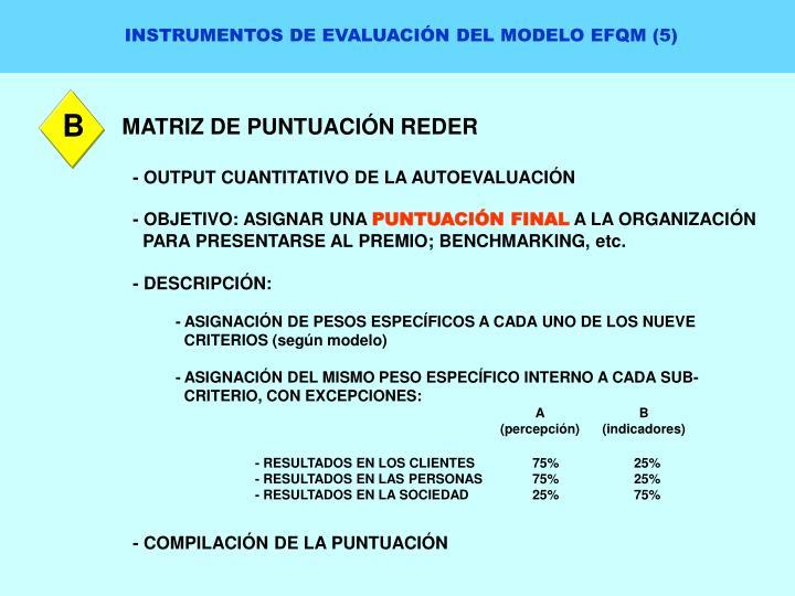 INSTRUMENTOS DE EVALUACIÓN DEL MODELO EFQM (5)