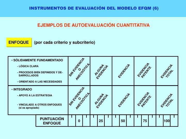 INSTRUMENTOS DE EVALUACIÓN DEL MODELO EFQM (6)