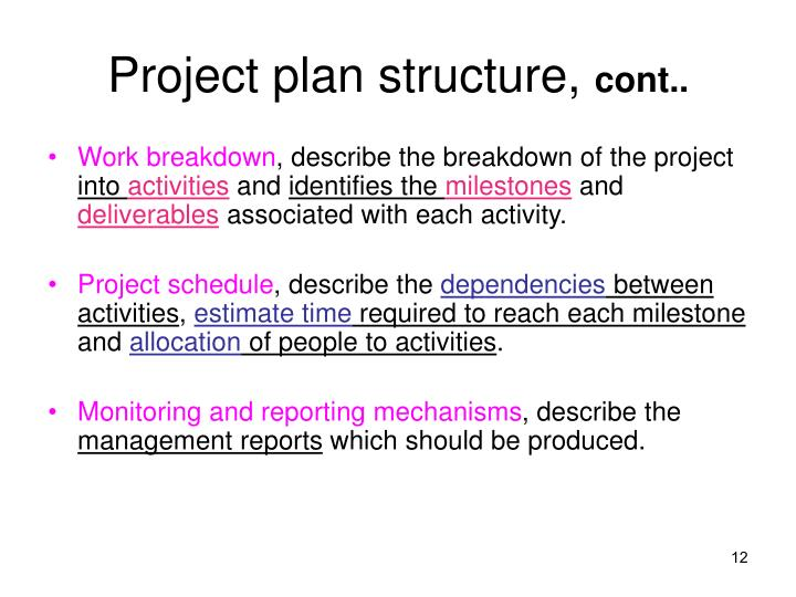Project plan structure,
