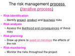 the risk management process iterative process