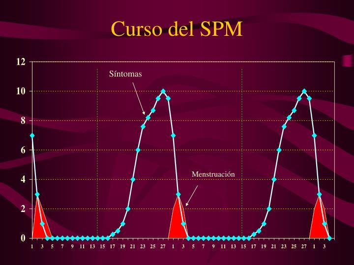 Curso del SPM