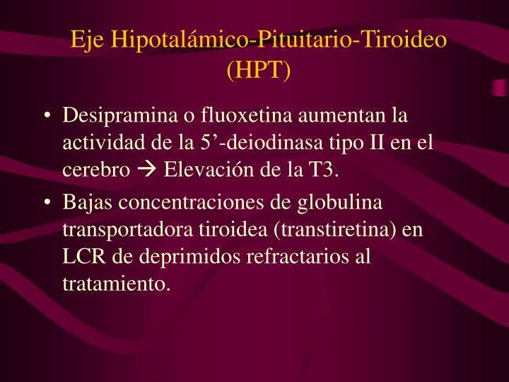 Eje Hipotalámico-Pituitario-Tiroideo (HPT)