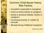 common child abuse history risk factors58