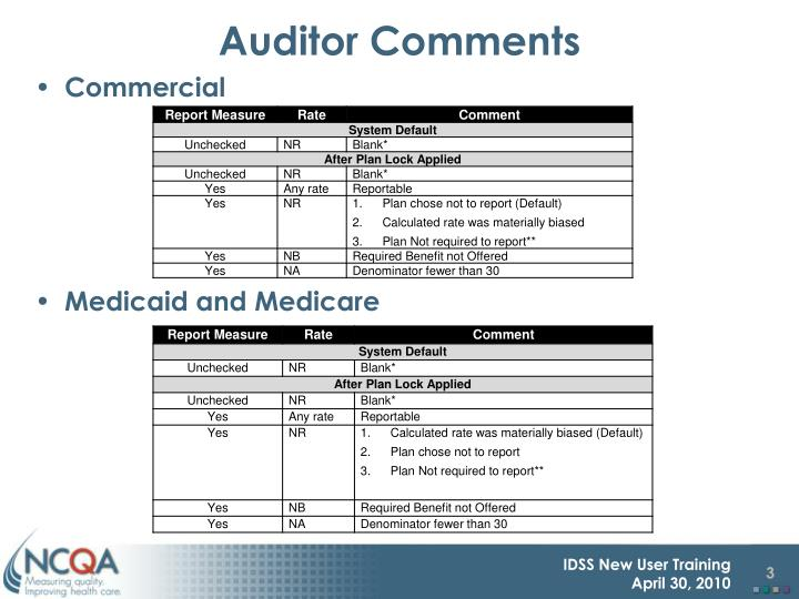 Auditor comments