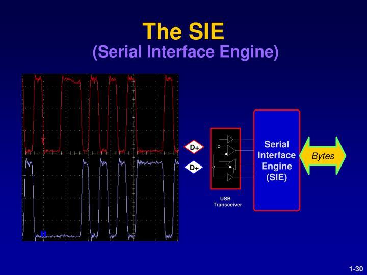 The SIE