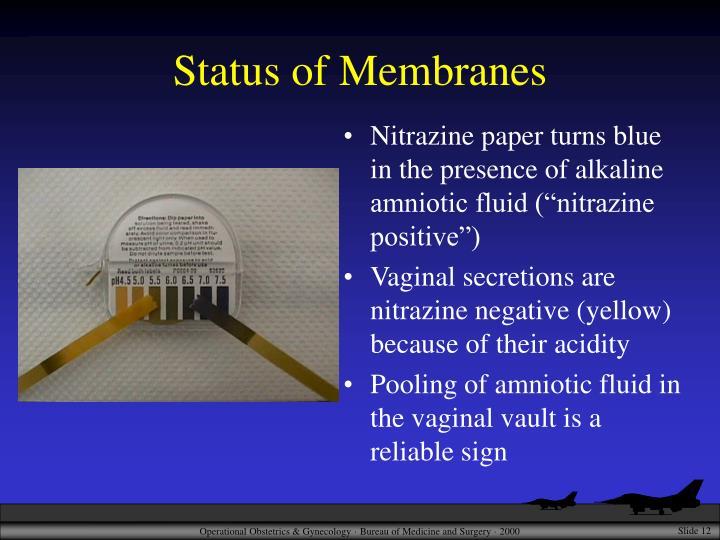 Status of Membranes