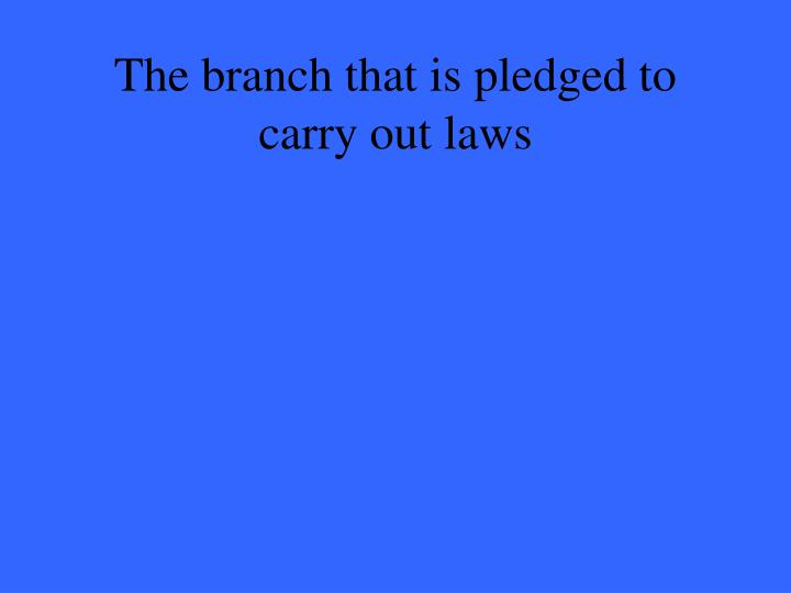 The branch that is pledged to carry out laws
