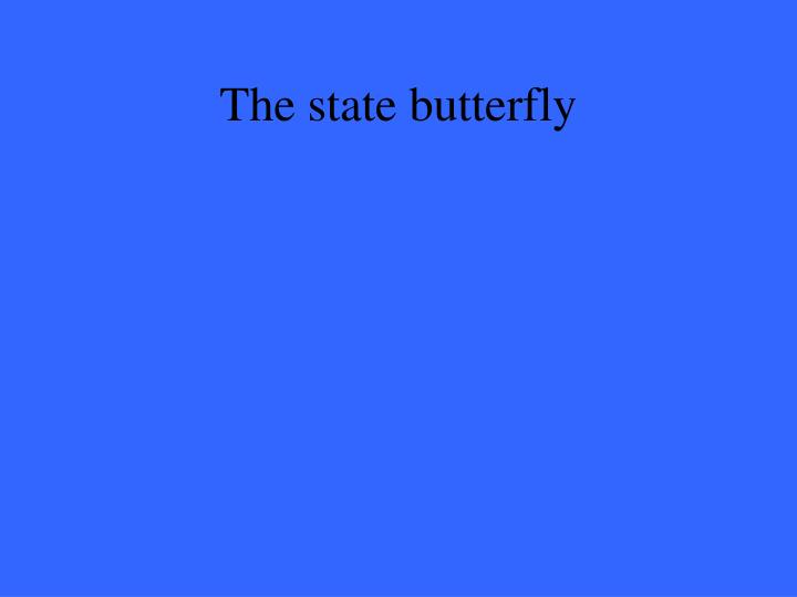The state butterfly