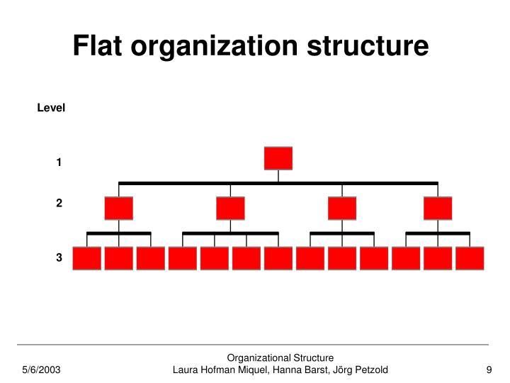 Flat organization structure