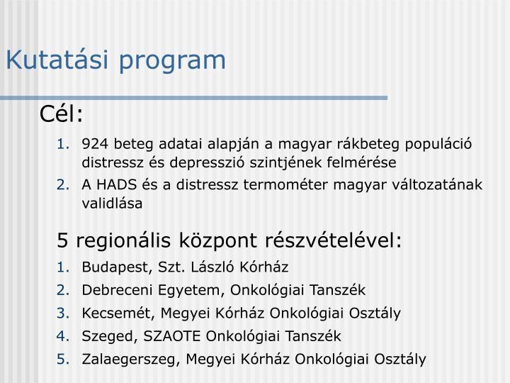 Kutatási program