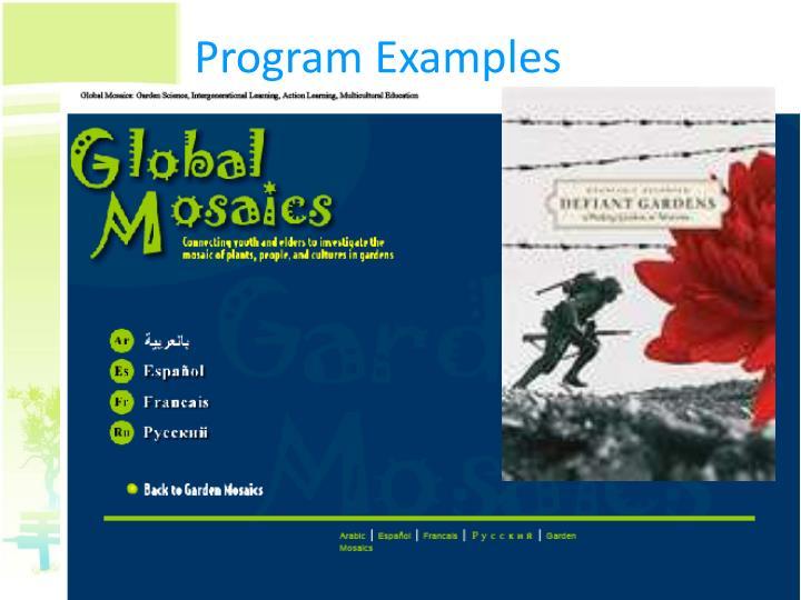 Program Examples