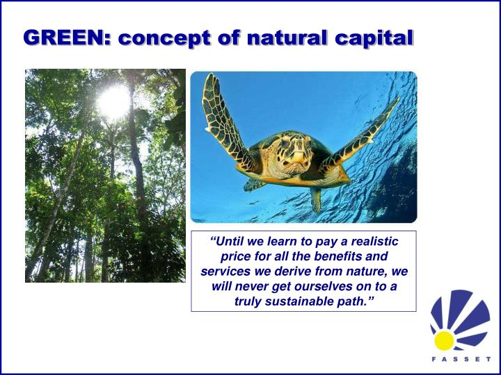 GREEN: concept of natural capital