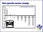 new growth sector energy