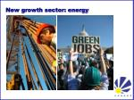 new growth sector energy1