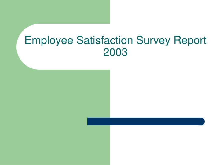 Employee satisfaction survey report 2003