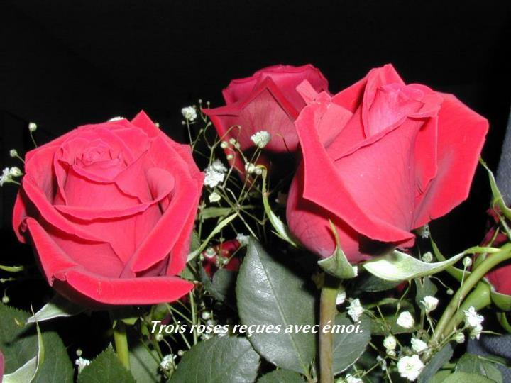 Trois roses reçues avec émoi.