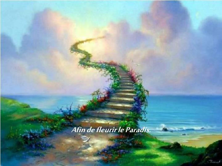 Afin de fleurir le Paradis.