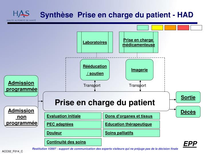 Synthèse  Prise en charge du patient - HAD