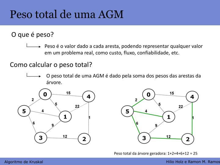 Peso total de uma AGM