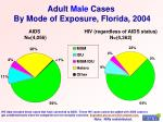 adult male cases by mode of exposure florida 2004