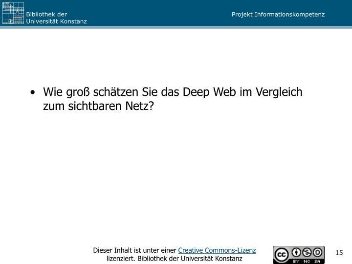 Wie groß schätzen Sie das Deep Web im Vergleich zum sichtbaren Netz?