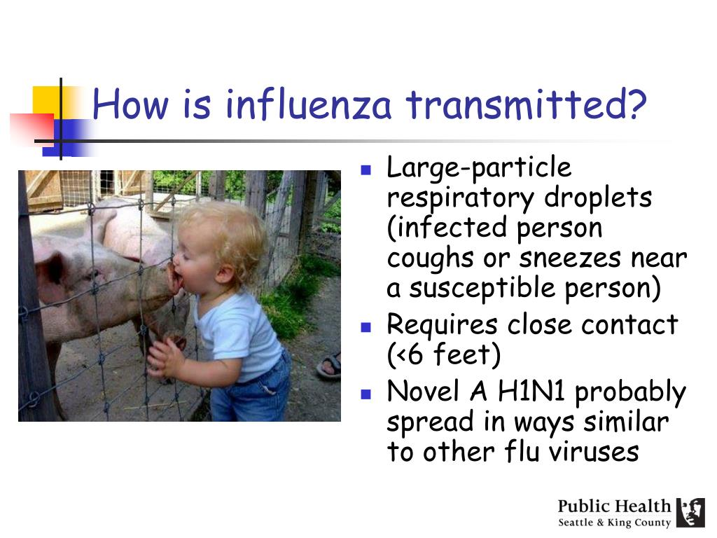 How is influenza transmitted?