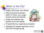 what is the flu